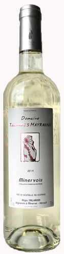 2018 Muscat Blanc trocken IGP Domaine Tailhades Mayranne