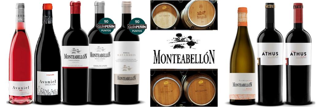 Monteabellon-wines-slider-1Medailles